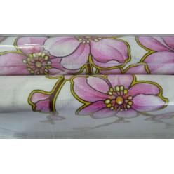 Сакура в белом цвете
